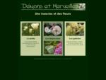 Deacute;mons et Merveilles, des insectes et des fleurs