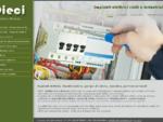 Elettricista Brescia – Pannelli fotovoltaici Brescia – D. i. e. c. i. di Damini Oscar