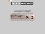Mieke Mares, Fysiotherapie bij huisdieren