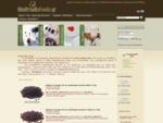 Dimitriadis Foods