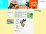 Vabljeni na največjo razstavo dinozavrov v Sloveniji.