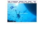 Welkom bij onderwatersportvereniging Discovery Dive.