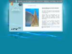 Diskusfische Kobernaußerwald :: | Diskus Fische | Diskus Zucht | Bilder | Informationen | Verkauf |