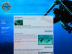 Diving Extreme - nurkowanie, kursy nurkowania, turystyka nurkowa, wyprawy nurkowe, nurkowanie