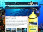 Diving Nettuno. Sorrento e Amalfi. Immersioni tra Capri e Positano, a Marina del Cantone.