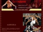 DJ Fabian Geis Band DJ Alleinunterhalter Musiker für Hochzeit Geburtstag Firmenfeier