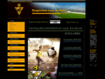 dlbalio. pt Desportivo Leça do Balio
