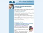 DLSI - Création optimisation site internet sites web Montpellier Hérault