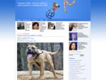 Собаки - породы собак, дрессировка собак, клички собак