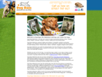Dog day care centre, dog walking and dog sitting