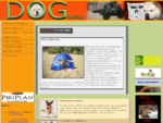 DogNews. gr-Ο ΣΚΥΛΟΣ ΠΡΩΤΟ ΘΕΜΑ