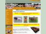 DOGSFRESH BARF Webshop chiens chats furets poussins poulet boeuf Livraison en France Belgique Huile