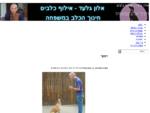 אלון גלעד - אילוף כלבים
