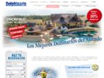 Nados con delfines en Cancún, Riviera Maya, Tulum y Cozumel- México Dolphinaris