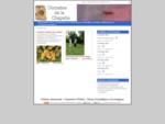 Ferme gîte expérimentale en sous-bois, agriculture traditionnelle et phytosociologie appliquée à...