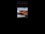 Artiste peintre - peintre - Dominique Fajeau - galerie d'art - exposition de peinture - peintre cont