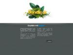 Yoann Dondicol | Graphiste Webdesigner | Paris