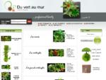 Du Vert Au Mur - Tableau végétal - Cadre végétal