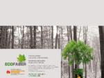 ECOFABER - costruzione e produzione caldaie a biomasse - pellet, legna, mais