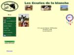 Equitation (Bailleul - 59 - NORD) Les écuries de la blanche (Bailleul - 59 - NORD)