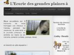 Accueil - L'Ecurie des grandes plaines à Biville-la-baignarde