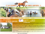 eacute;cole d'eacute;quitation, balade agrave; cheval ou poney, dressage de chevaux, demi-pension