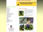 CENTRE CANIN ELITEFORM - dressage de chiens dans le nord (59) - dressage chien fourmies -