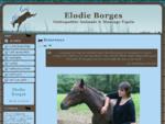 Elodie Borges - Ostéopathe Equin et Canin