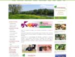 Agenzia di viaggi e tour operator la tua vacanza in Toscana