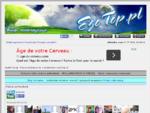 Forum ezoteryczne | ezoteryka | ezoTop. pl