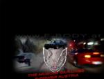 F-Body.at - Die österreichische Pontiac Firebird & Chevrolet Camaro Musclecar Website