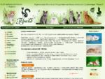 Клуб любителей кошек Прайд г. Курган. Проведение выставок кошек, консультирование по приобретению