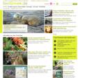 feelgreen. de - Das Portal für Umwelt, Gesundheit und Lifestyle
