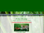 Feline Beauty, Elevage de chats savannahs et de servals Île-de France