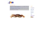 First Fimex GmbH