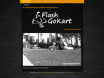 Home - Flash-GoKart - Welcome to a revolution in kart driving!