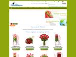 Florerias flores y regalos | Envía flores a domicilio | Floristerías