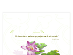 Flor do Lago - Serra da Estrela
