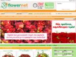 ΑΠΟΣΤΟΛΗ ΛΟΥΛΟΥΔΙΩΝ | ΑΝΘΟΠΩΛΕΙΑ online ΑΝΘΟΠΩΛΕΙΟ | αποστολή λουλουδιών, ανθοπωλείο, ΛΟΥΛΟΥΔΙΑ | ..