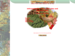 Forst und Wald Nutzung und Pflege, Informationen und Bilder