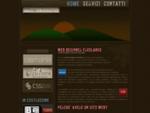 Web designer freelance sviluppo siti web