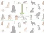 Franois Education Canine - Dressage de votre chien à Besançon (Doubs)