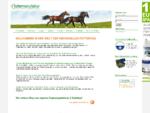 Pferdefutter, Ergänzungsfutter, Zusatzfutter, individuell bei Ihrer futtermanufaktur