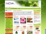 Prodej semen exotických rostlin, zeleniny a chilli papriček