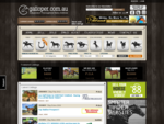 Galloper. com. au, Horses for Sale, Bloodstock, Thoroughbreds, Race Horses for Sale