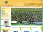 Φυτώρια | Εισαγωγή εμπορία ειδών κήπου | Χονδρική | Λιανική
