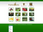 Φυτά, γλάστρες, είδη και αξεσουάρ κήπου