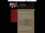 GATAUTO VARILLEROS ESTETICA DEL AUTOMOVIL MADRID - Inicio
