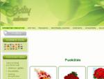 Puokštės - Gėlių pristatymas, gėlės į namus, internetinė parduotuvė Puokštės, Gėlės, Vestuvinės