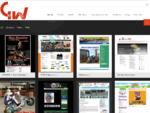 GELWEB Sviluppo siti web Siti in Wordpress CMS accessibili per la P. A. Grafica pubblicitaria Monta
